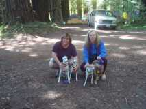 IRG - Kelly, Joanne and pups