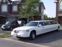 Our Tear and Stretch Limo